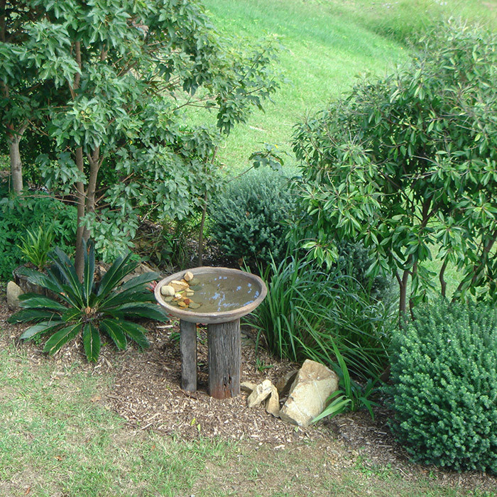 native style garden and bird bath